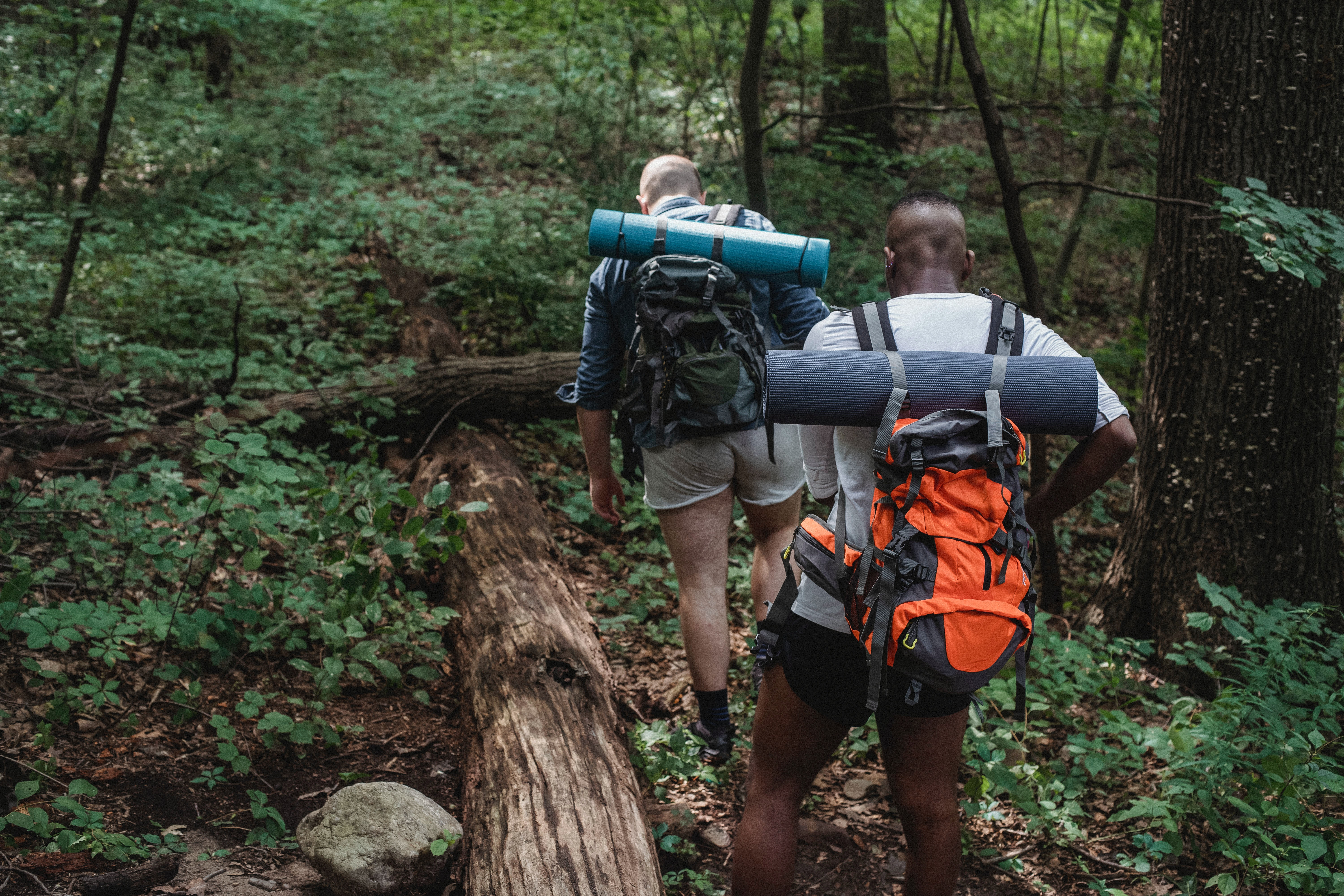two men backpacking through a forest